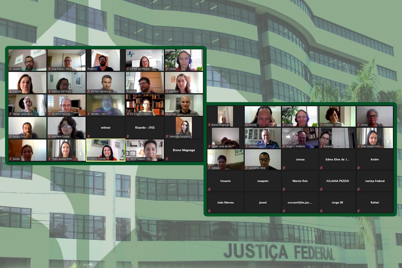 Cristiane Conde Chmatalik se despede da da Direção do Foro da SJES com evento virtual